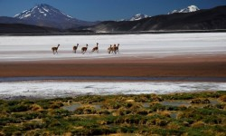 Tierras Argentinas